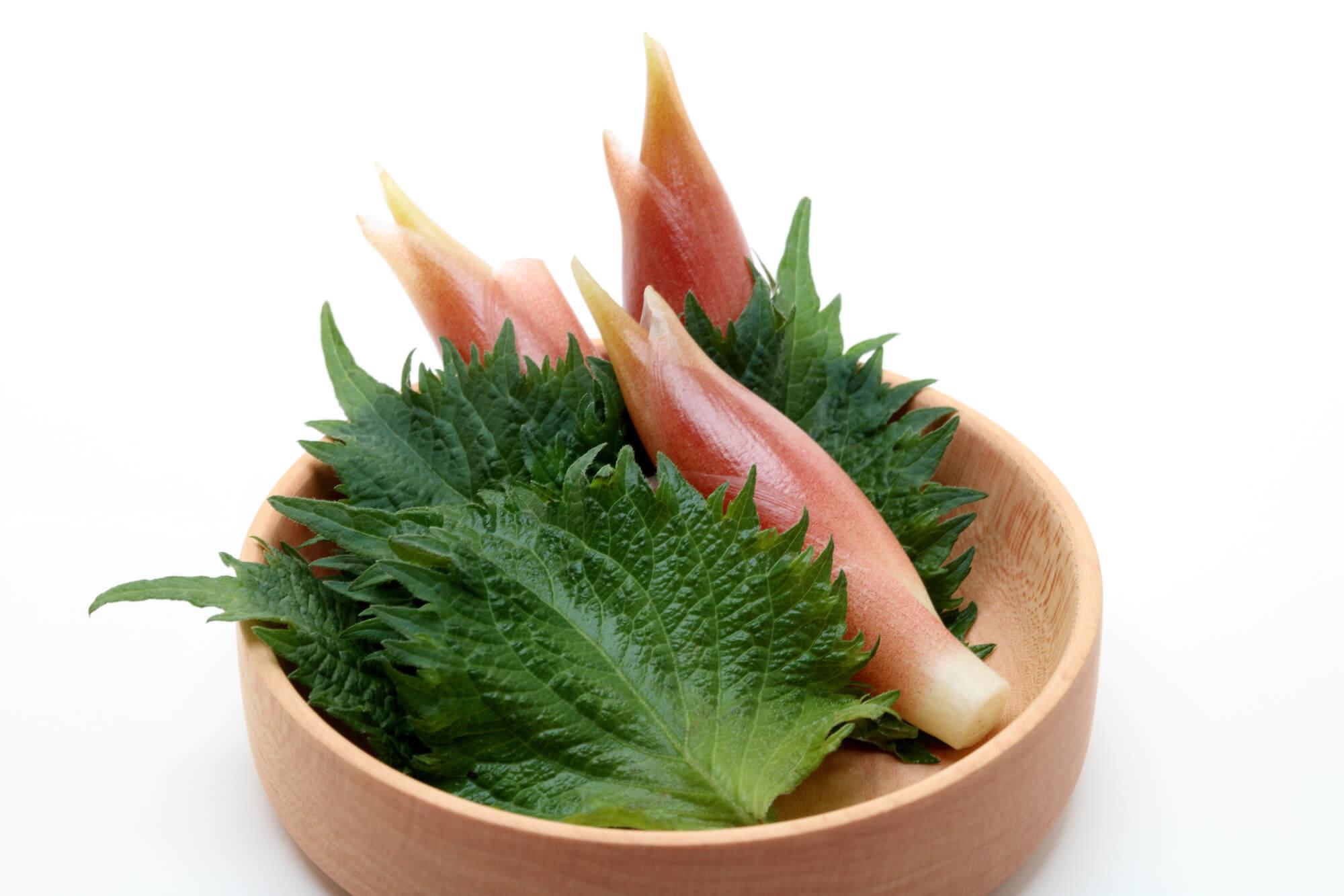 栃木県の藤岡冷や汁は細麺でいただく冷や汁